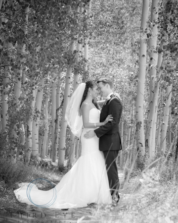 Wedding Photography in Crested Butte-RSO- 10 (175 of 234)