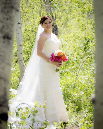 Wedding Photography in Crested Butte-RSO- 10 (228 of 389)