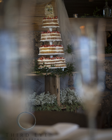 Wedding Photography in Crested Butte-RSO- 10 (282 of 389)