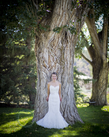 Wedding-Photography-in-Crested-Butte-RSO- 10 (104 of 261)