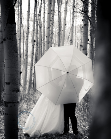 Wedding-Photography-in-Crested-Butte-RSO- 10 (4 of 37)