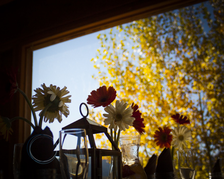 Wedding-Photography-in-Crested-Butte-RSO- 10 (195 of 267)