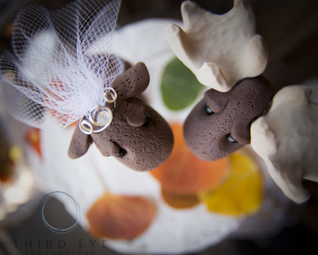 Wedding-Photography-in-Crested-Butte-RSO- 10 (201 of 267)