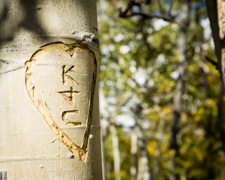 Wedding Photography in Crested Butte-RSO- 10 (293 of 407)