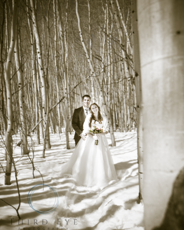 Wedding-Photography-in-Crested-Butte-RSO- 10 (83 of 152)