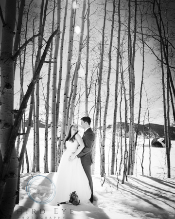 Wedding-Photography-in-Crested-Butte-RSO- 10 (89 of 152)
