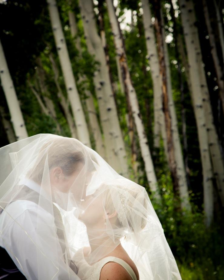 3182_tep_2015.07.18_wed_pickering