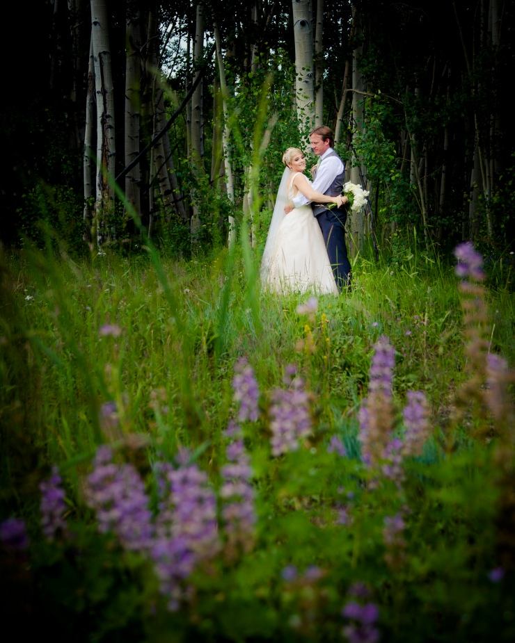 3187_tep_2015.07.18_wed_pickering