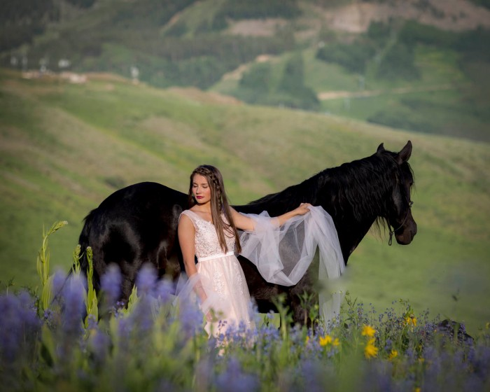 11604_2017.07.03_SEN_Olson-Horse